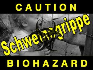 schweinegrippe-blog-2
